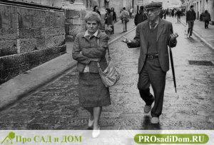 Изображение - Надо ли платить налог на недвижимость пенсионеру в 2019 году льготы и как вернуть налог 2235972573_d556b591e3_z-300x203