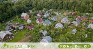 Оформления дачного участка в собственность: пошаговая инструкция 2018