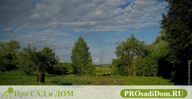 Приватизация земельного участка в Московской области