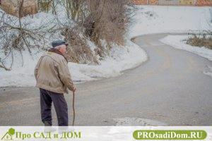 Изображение - Надо ли платить налог на недвижимость пенсионеру в 2019 году льготы и как вернуть налог grandpa-2810809_640-300x200
