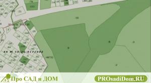 Как узнать собственника по кадастровому номеру земельного участка