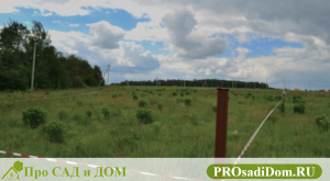 Как оформить земельный участок в собственность