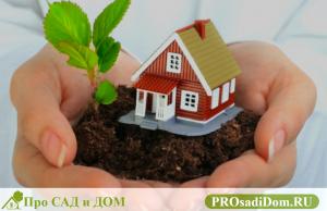 Земельный участок в собственности как оформить дом
