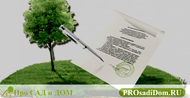 Помощь в оформлении земельного участка в собственность