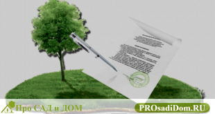 Правовые статусы земельных участков: виды