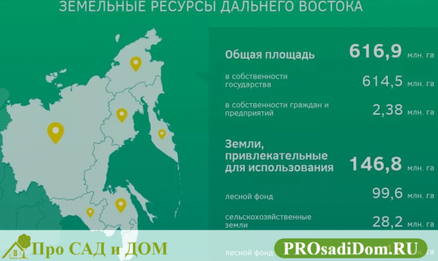 Бесплатный гектар на Дальнем Востоке: как получить