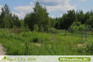 Пожизненное наследуемое владение земельным участком: земельный кодекс