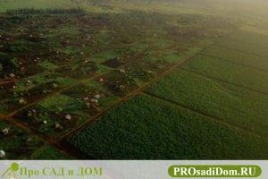 Как оформить землю под ЛПХ в собственность