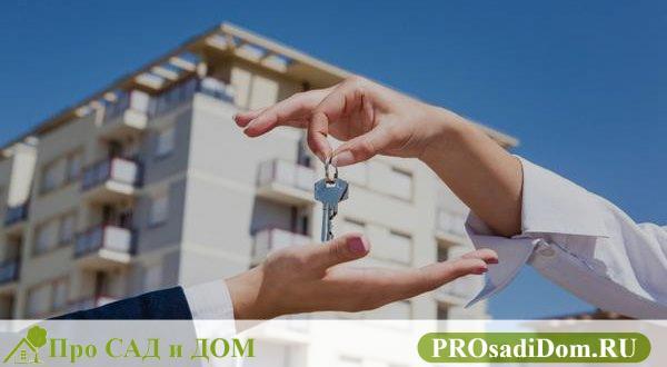 Как сдать квартиру в аренду правильно налог