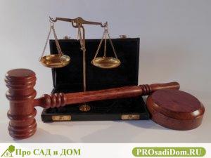 Приобретательная давность судебная практика