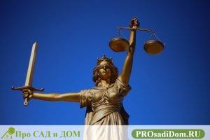 может ли управляющая компания подать в суд на собственника жилья
