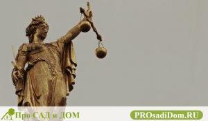 Приобретательская давность на земельный участок судебная практика