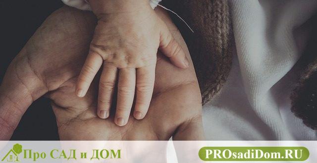 Можно ли прописать ребенка отдельно от родителей: правила регистрации несовершеннолетнего ребенка отдельно от родителей