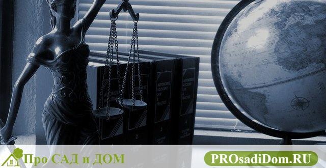 Судебный метр: каксудья отстояла право на приватизацию служебной квартиры