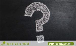 Как узнать приватизирована ли квартира или нет