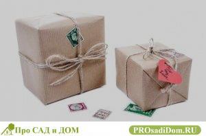 Можно ли передарить квартиру полученную по дарственной или саму дарственную