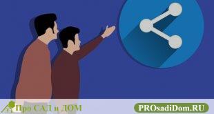 Как оценить долю в квартире: для продажи или выкупа