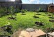 Закладка плодово-ягодного сада