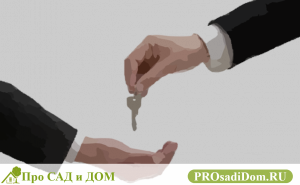 Проверяем квартиру перед покупкой: пошаговая инструкция