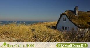 Дарственная на дом и земельный участок между близкими родственниками: образец договора