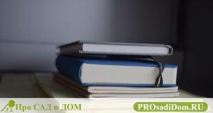 Как и где получить выписку из домовой книги?