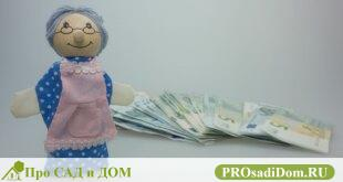 Все о накопительной пенсии