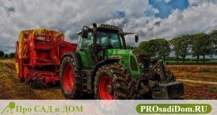 Как получить субсидию на строительство дома в сельской местности