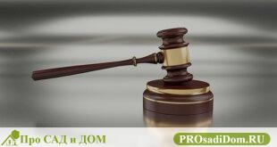 Раздел совместного имущества: новый законопроект